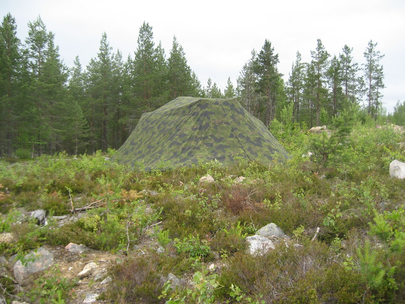 Multispectral camouflage systems - forested area