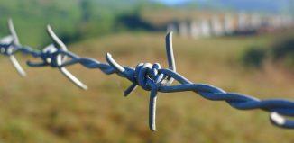 cross-border threat screening
