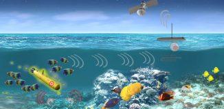 אורגניזמים תת ימיים