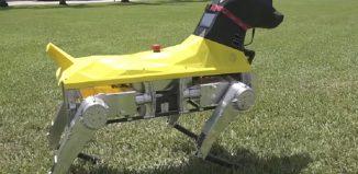 Astro - robot dog by Florida Atlantic University-