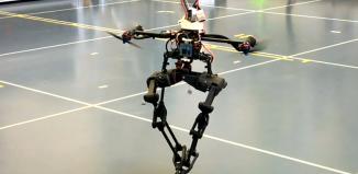 Quadcopter Bipedal Robot