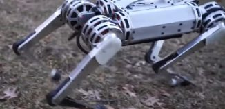 maneuverable robot